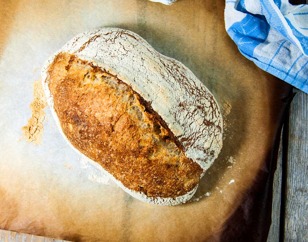Whole wheat bread recipe for beginners